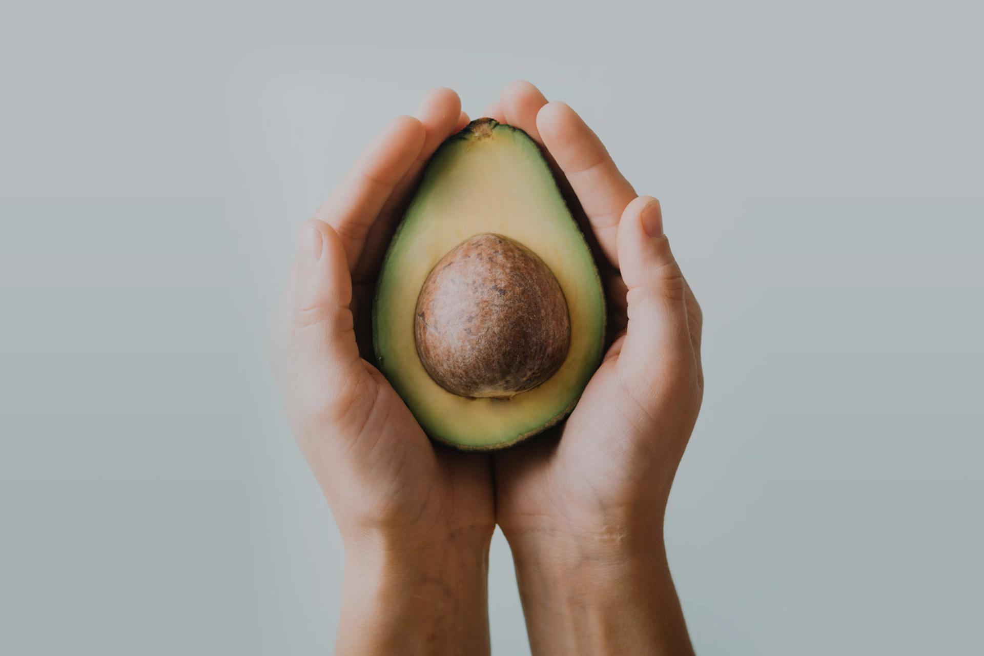 Alisios Tropical Fruits, posicionando nuestro producto mundialmente.